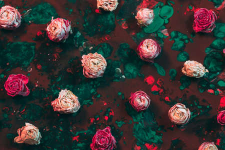 Photo for Abstract floral art background. Flat lay arrangement of pink dried rose buds on red and emerald green paint. - Royalty Free Image