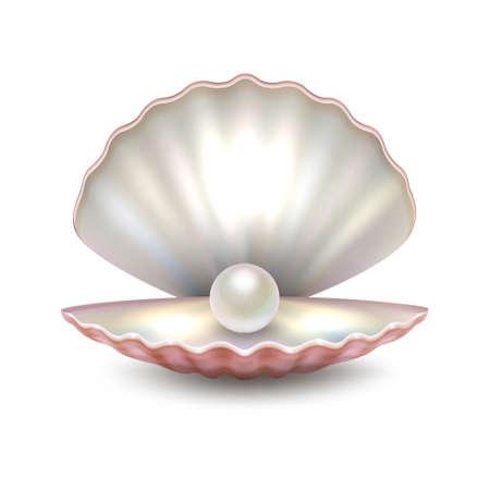 Foto de Realistic vector beautiful natural open sea pearl shell closeup isolated on white background. Design template, clipart, icon or mockup in EPS10. - Imagen libre de derechos