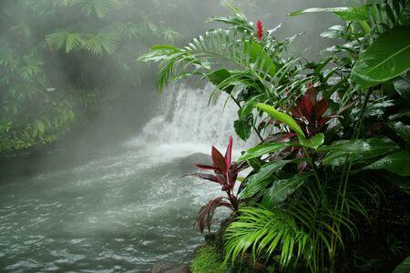 Arenal Hot Springs - Costa Rica