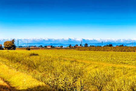 the peaceful silence of the fields in the Emilia Romagna region in the lower Po valley in Italy while the hills are the background