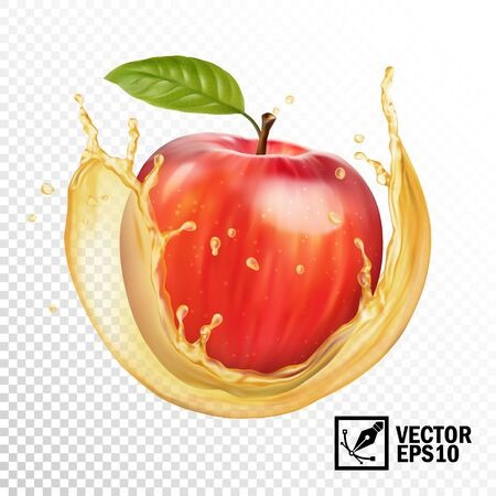 Realistic vector apple in a transparent splash of juice. Editable handmade mesh