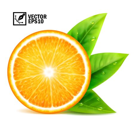 Realistic vector set of elements: slice of fresh orange with leaves and dew drops. Editable handmade mesh.