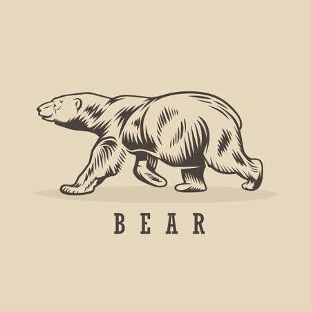 Illustration pour Vector bear illustration. Monochrome illustration with a bear. - image libre de droit