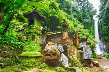 Beautiful waterfall in rainforest  Bali