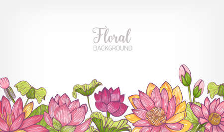 Horizontal Banner Or Floral Background Decorated With Bright Colored