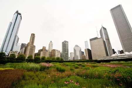 Chicago Skyline Over Millennium Park Garden