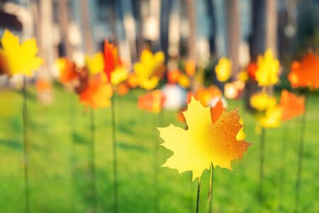 Photo pour Bright handmade metal colorful maple leaves autumn garden decoration sticked into ground with blurred grass and woods background. Beautiful fall season yard art decor. - image libre de droit