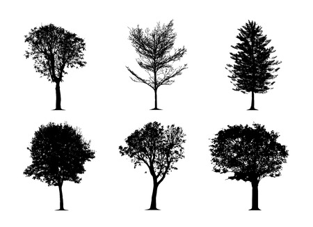 Illustration pour the silhouette tree on white background. Vector trees in silhouettes set - image libre de droit