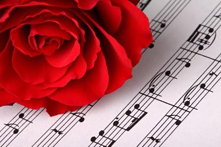 red rose on music sheet.