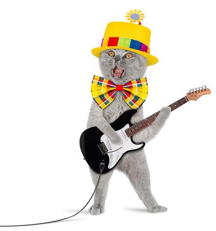 Photo pour Cat with guitar and funny hat - image libre de droit