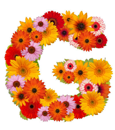 Flower alphabet isolated on white. Letter G