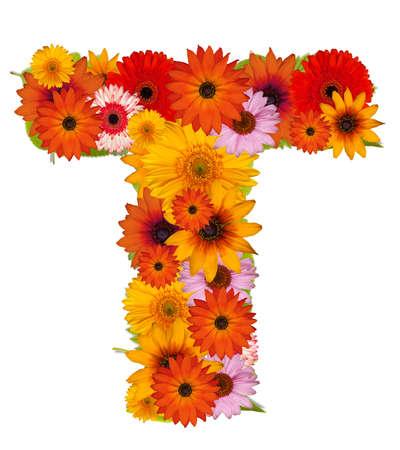 Flower alphabet isolated on white. Letter T