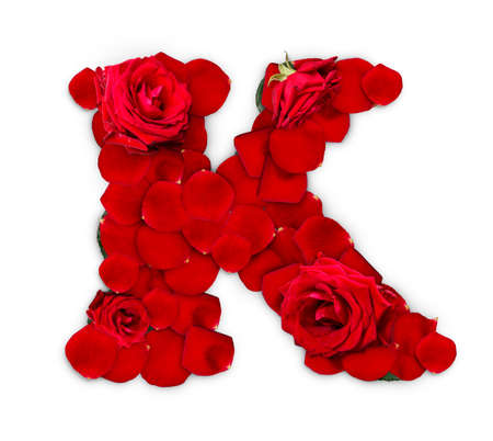 Letter K made from red roses and petals isolated on a white background