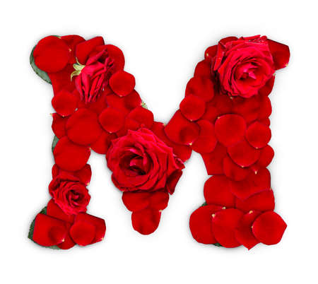 Letter M made from red roses and petals isolated on a white background