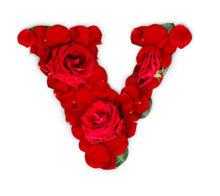 Letter V made from red roses and petals isolated on a white background