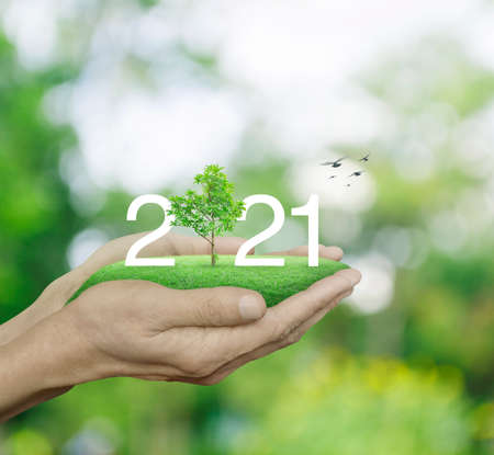 Photo pour 2021 white text with growing tree on green grass field in man hands over blur green tree, Happy new year 2021 ecological cover concept - image libre de droit