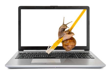 Photo pour Laptop computer with a snail crawling on a yellow network cable. Slow internet concept. - image libre de droit