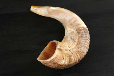 ram horn ( shofar ) isolated over black background