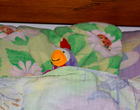 Toy plush chicken lying in children