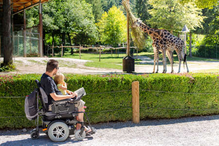 Photo for Disabled Father in Wheelchair enjoying Nature with Daughter Girl in Outside zoo park on a sunny day. - Royalty Free Image