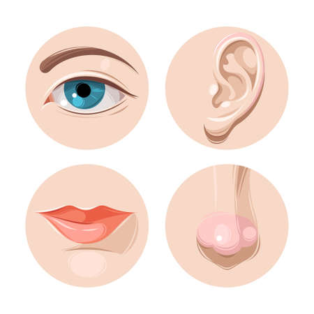 Illustration pour Vector illustration of human eye, ear, mouth and nose - image libre de droit