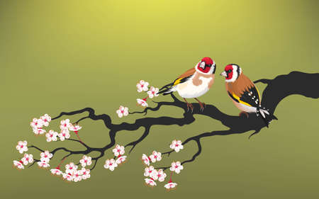Illustration for Vector illustration of branch of blooming cherry with goldfinch - Royalty Free Image