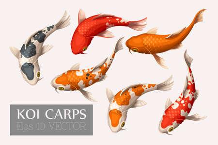 Illustration pour Vector set of beautiful and colorful koi carps - image libre de droit