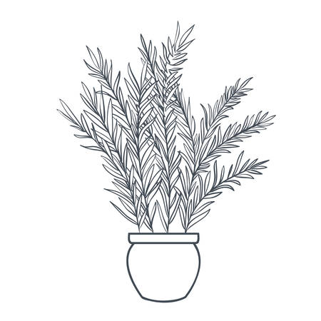 Illustration pour houseplant with potted isolated icon vector illustration design - image libre de droit