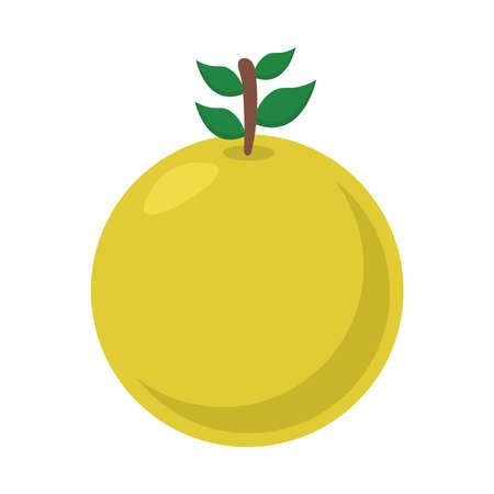 Illustration for orange flat style icon design, Fruit healthy organic food sweet and nature theme Vector illustration - Royalty Free Image