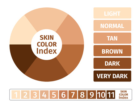 skin color index , infographic vector . 3 chart of skin