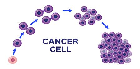 Illustration pour cancer cell stage and development vector - image libre de droit