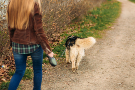 Photo for Back view of blond hair woman walk with dog - Royalty Free Image