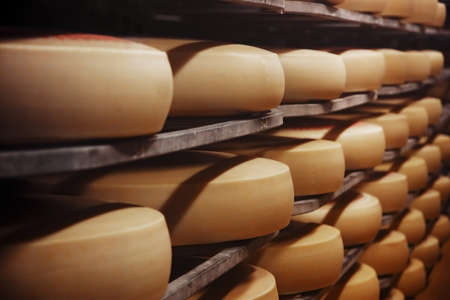 Photo of a cheese factory in Switzerland