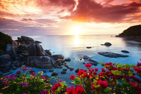 Foto de Tranquil beach resort, beautiful morning glory on the Koh Samui, Thailand - Imagen libre de derechos