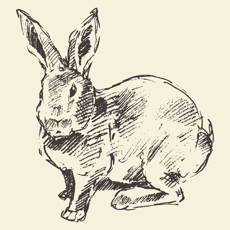 Illustration pour Rabbit, engraving style vintage illustration hand drawn sketch - image libre de droit