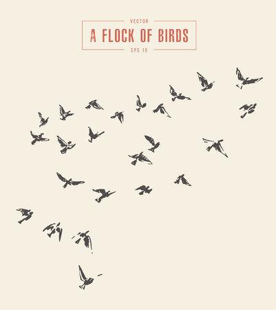 Ilustración de A flock of birds, hand drawn vector illustration. - Imagen libre de derechos