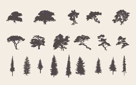 Illustration pour Set silhouettes trees pine fir cedar vector sketch - image libre de droit