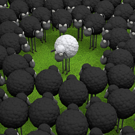 Photo pour One white sheep standing out from the crowd, leadership, difference concept - image libre de droit