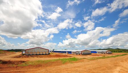 Modern poultry houses with tunnel ventilation systems in the countryside of panama
