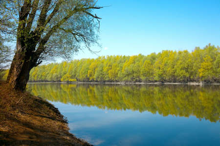 River with reflections of trees on the smooth water surface