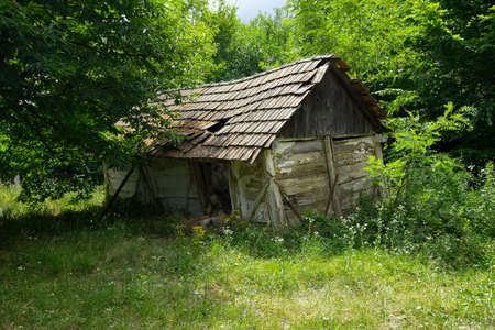 Collapsed, old hut in the forest