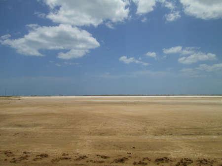 Desert Savannah