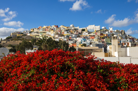 Colorful residential houses in old uptown of Las Palmas de Gran Canaria, the capital city of Canary Islands, Spain