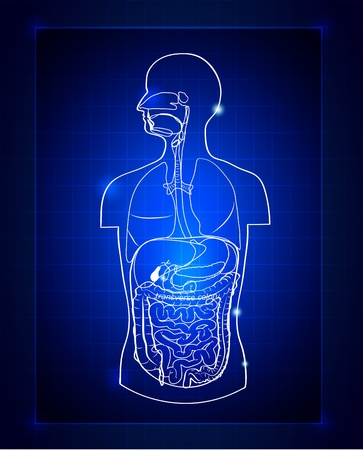 Abstract gastrointestinal system