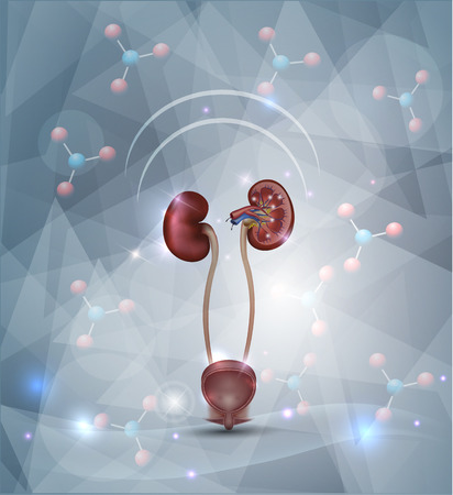 Illustration pour Kidney protection abstract design, abstract background with molecules, abstract triangle shapes and light shades. - image libre de droit