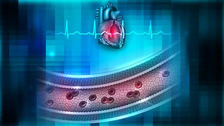 Illustration pour Vessel blood flow and heart illustration. - image libre de droit