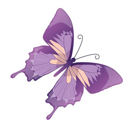 Foto de The butterfly  on a white background. Vector - Imagen libre de derechos