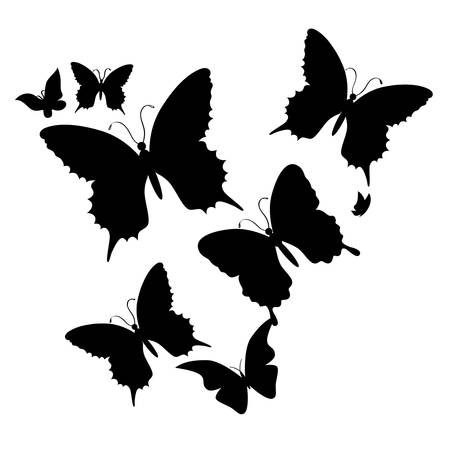 silhouette of butterfly on a white background.vector
