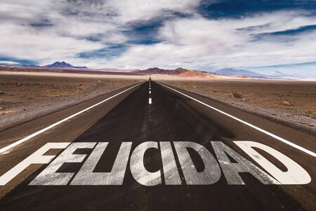 Felicidad (happiness in Spanish) written on the road