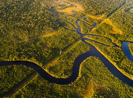 Foto de Amazon Rainforest in Brazil - Imagen libre de derechos